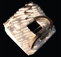 Enlarge Photo: Model (P5). By LI Ho Lok Klaus.