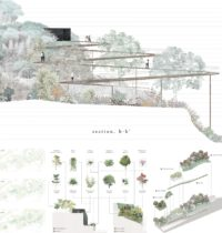 Site section and planting strategy. By WONG Wing Yin Erica.