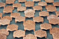 Enlarge Photo: Reformative Coral Habitats | Reef Tiles 6