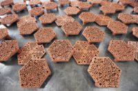 Enlarge Photo: Reformative Coral Habitats | Reef Tiles 8
