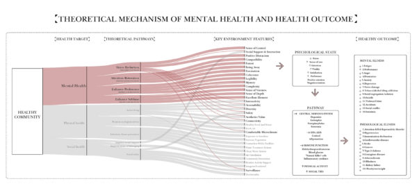 Enlarge Photo: Theoretical mechanism of mental health and its health outcome. By WANG Siqi Betsy.