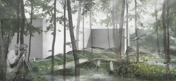 Introduction to Landscape Design Studio