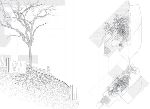 Landscape Media 2