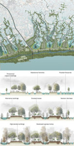 Levee Town: From Flood Mitigation to Urban Expansion. By CAI Xinya.