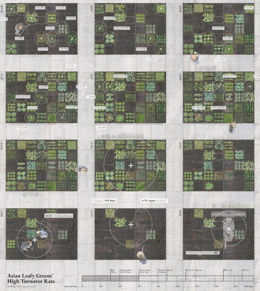 Man-made Ecologies: Interpreting Layers of Urban Landscapes