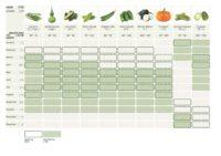 Enlarge Photo: Edible Roof 5