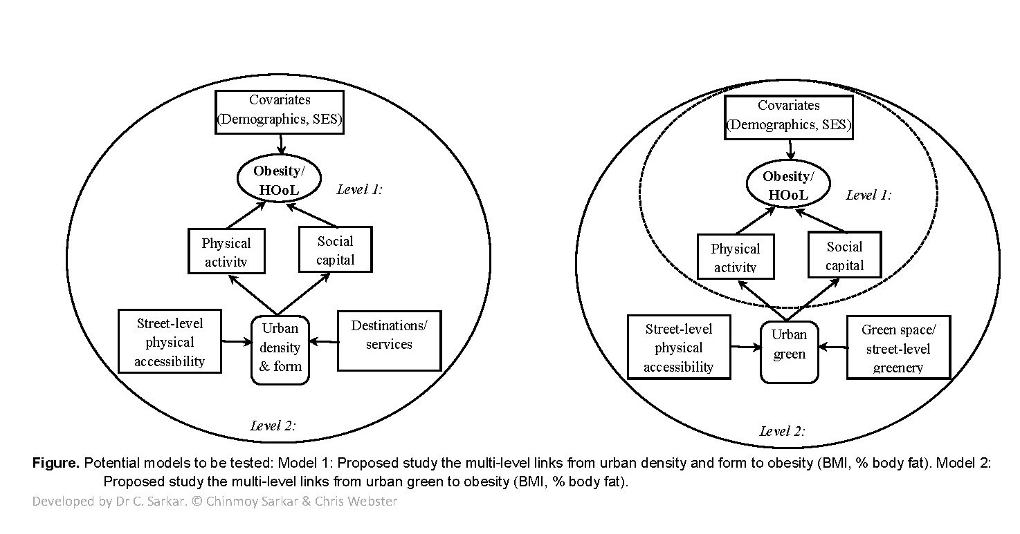 Figure. Potential models to be tested: Model 1: Proposed study the multi-level links from urban density and form to obesity (BMI, % body fat). Model 2: Proposed study the multi-level links from urban green to obesity (BMI, % body fat). Developed by Dr C. Sarkar. © Chinmoy Sarkar & Chris Webster