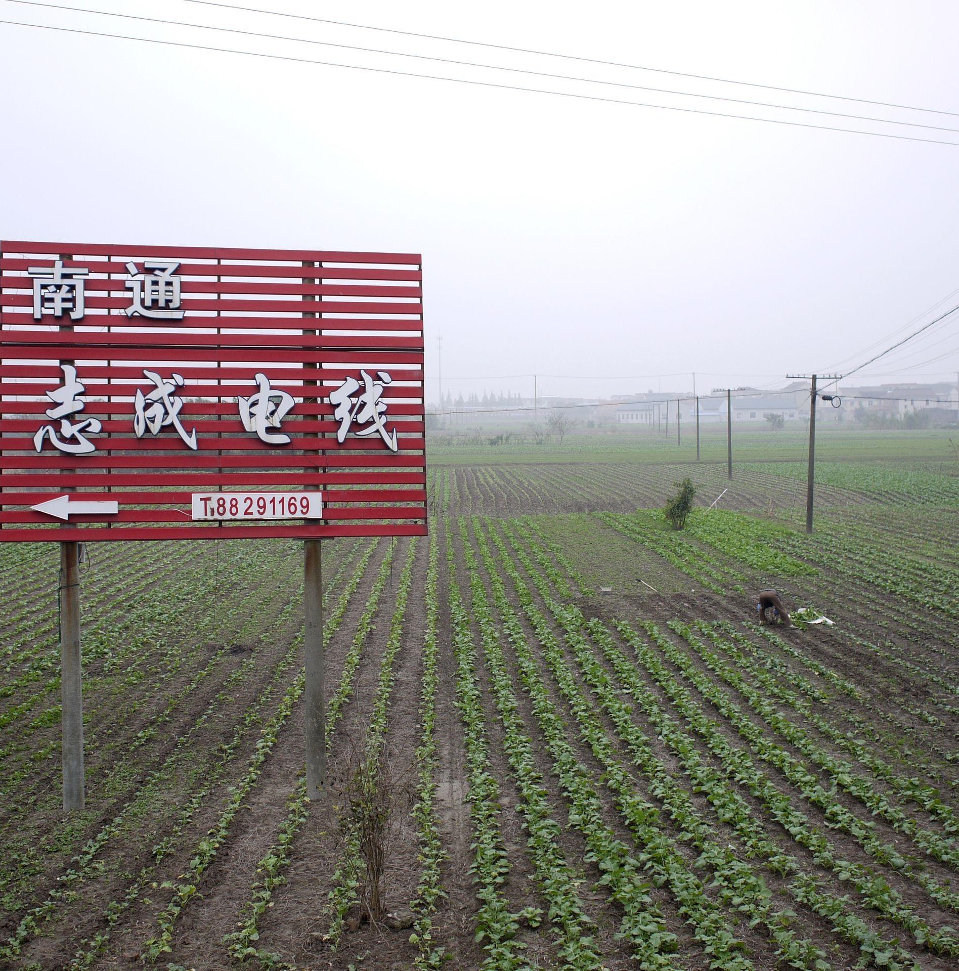 Intertextures. Polarization and Diffusion in Yangtze River Delta: social ties, environment, economy