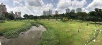 Studio Yangon 2017: Dala, Landscape Strategies in a Tropical Urban Environment 4