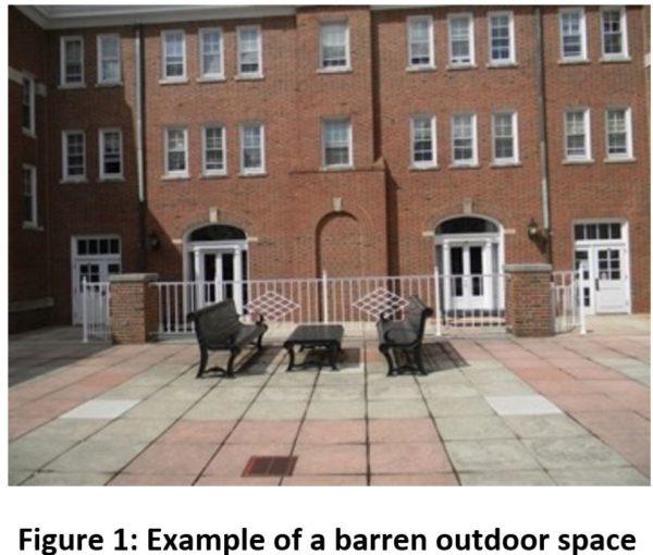 Figure 1: Example of a barren outdoor space