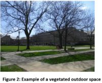 Figure 2: Example of a vegetated outdoor space