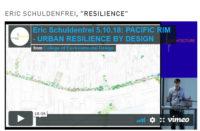 "ERIC SCHULDENFREI, ""RESILIENCE"""