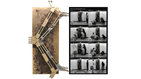 Ken Yip, Biodegradation Cradle 20+, 2011